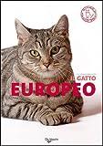 Image de Il gatto europeo