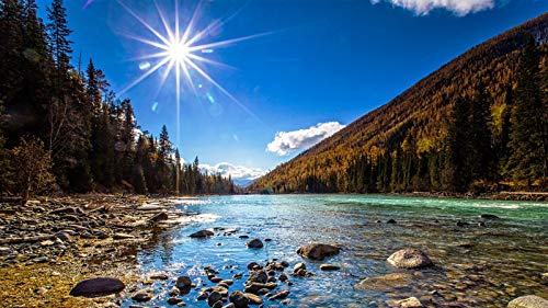 Adult Jigsaw Puzzle 1000 Piece Wooden Puzzle Grand Canyon River Under The Sun Very Good Classic Educational Game 29.5x20in