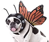 Animal Planet PET20101 Butterfly Dog Costume  Large