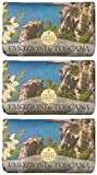 "Saponeria Nesti Firenze: ""Macchia Odorosa"" Perfumed Natural Soap, ""Emozioni in Toscana"" Line 8.8 Ounces (250g) Packages (Pack of 3) [ Italian Import ]"