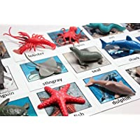 Curious Minds Busy Bags Montessori Animal Match - Miniature Ocean Animals with Matching Cards - 2 Part Cards. Montessori Learning Toy, Language Materials