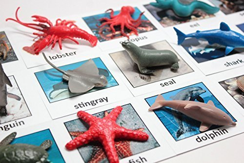 Curious Minds Busy Bags Montessori Animal Match - Miniature Ocean Animals with Matching Cards