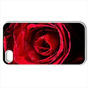 Red rose - Case Cover for iPhone 4 and 4s (Flowers Series, Watercolor style, White)