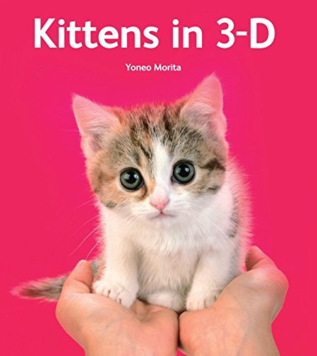 Kittens in 3-D by Harper Design