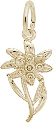 Charms for Bracelets and Necklaces 10k Yellow Gold Edelweiss Charm