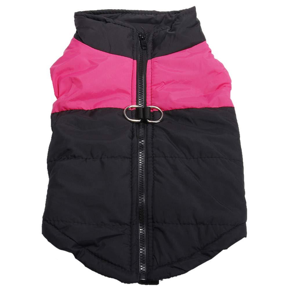 Chat Chiot Hiver Vêtements,Pet Dog Manteau Veste Pet Supplies Vêtements d'hiver pour Grand Chien,Manteau Habits pour Chien (XXXXL, Bleu)