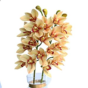 Htmeing 2pcs 10 Heads Artificial Cymbidium Orchids Flowers Plant Branches Stems for Wedding Centerpieces Floral Arrangement 105