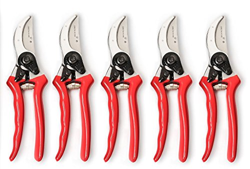 Hand Pruners for Indoor Gardening - Easy to Use, Rust Resistant Snips for Year Round Pruning &...