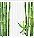 """Ambesonne Asian Shower Curtain, Branches of Bamboo Board Stalk Tropics Plants Greenery Fengshui Natural Lush, Cloth Fabric Bathroom Decor Set with Hooks, 70"""" Long, Green White"""