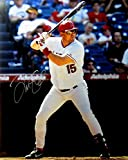 Tim Salmon Autographed Photo - 16X20 Daytime Home At Bat COA - Autographed MLB Photos