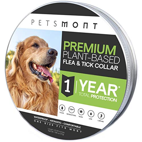Petsmont Flea Collar for Dogs, Unique Plant Based Formula, Small to Extra Large, 1 Year Protection, Stone Gray Color
