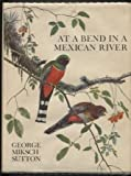 img - for At a Bend in a Mexican River. book / textbook / text book