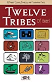 img - for Twelve Tribes of Israel book / textbook / text book
