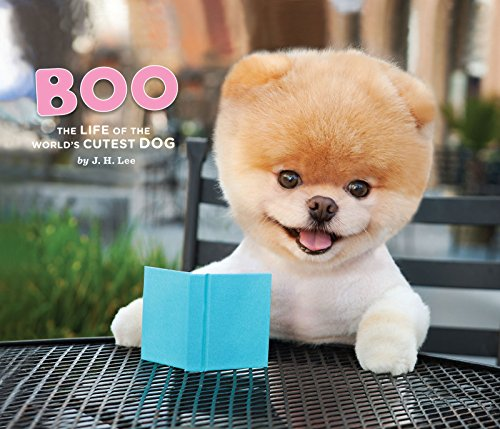 Boo: The Life of the World's Cutest