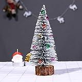 Quaanti Christmas Tree Christmas Decoration Supplies,Christmas Tree A Small Pine Tree. Placed in The Desktop Mini Christmas Tree (B/20CM)