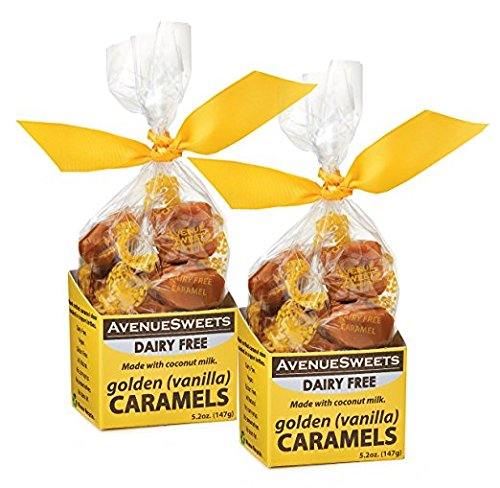 Soft Vegan Caramels Individually Wrapped, Dairy-Free Gluten-Free Caramel Candy Food Snacks Thank You Gift (Vanilla Flavored, two 5.2 oz boxes) -