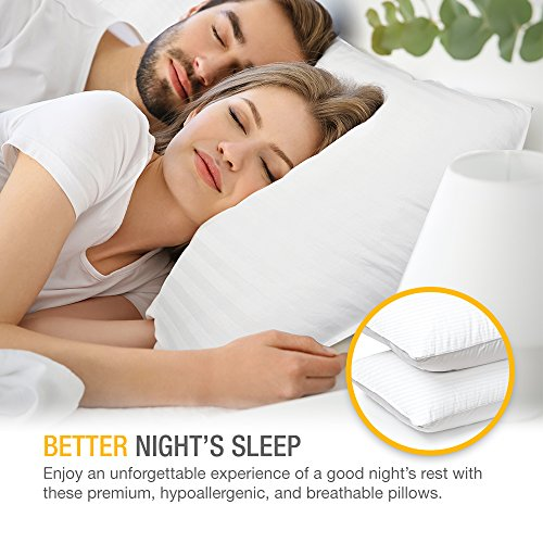 DreamNorth PREMIUM Gel Pillow Loft (Pack of 2) Luxury Plush Gel Bed Pillow For Home + Hotel Collection [Good For Side and Back Sleeper] Cotton Cover Dust Mite Resistant & Hypoallergenic - Queen Size