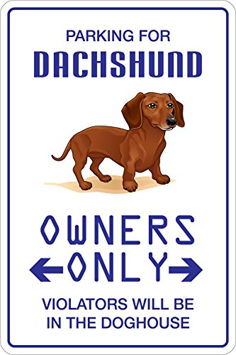 (StickerPirate Parking For Dachshund 8