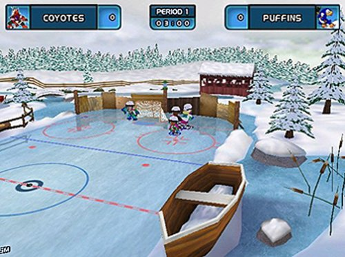 Amazon Com Backyard Hockey Pc Video Games