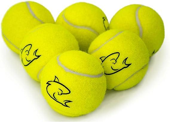 Shark Nueva 20 x Top calidad amarillo pelotas de tenis ideal para ...