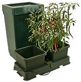 Easy2Grow 2 vasi di coltivazione idroponica starter kit