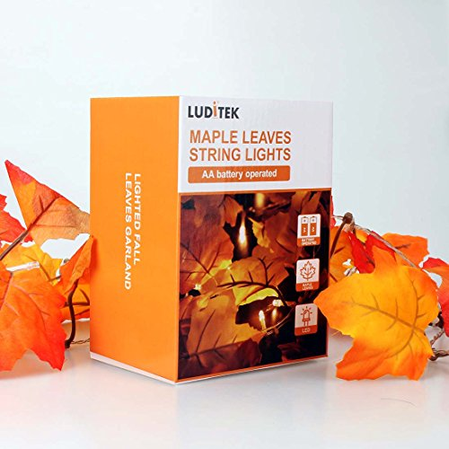 Thanksgiving Decorations Lighted Fall Garland, Thanksgiving Decor Halloween String Lights 8.2 Feet 20 LED, Thanksgiving Gift by Luditek (Image #5)