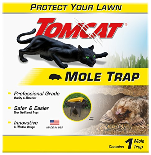 Top 10 Best Mole Traps Available In 2019