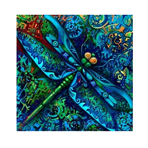 - MXJSUA DIY 5D Diamond Painting by Number Kits Full Round Drill Rhinestone Picture Art Craft Home Wall Decor Dragonfly 12x12In