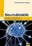 Neurodidaktik: Grundlagen und Vorschläge für gehirngerechtes Lehren und Lernen (Beltz Pädagogik)