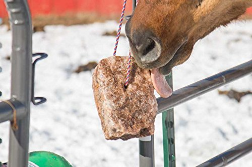 Product image of REDMOND - Rock on a Rope Unrefined Salt Rock for Horses 3 to 5 lbs (3 Pack)