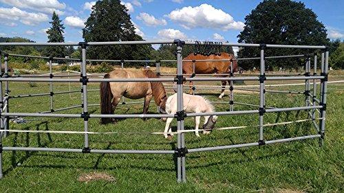 (Portable Horse Corral Box Set: Econoline- 8 Panels; 4 Rails)