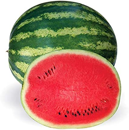 HEIRLOOM MELON SEED! Semillas 10+ seeds Graines Crimson White Watermelon