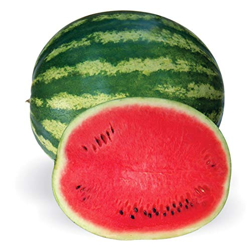Crimson Sweet - Crimson Sweet Heirloom Watermelon Seeds