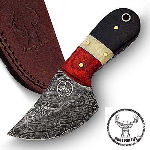 Hunt For Life Little Cajun Country Damascus Skinner Knife Fixed Gator Drop Point