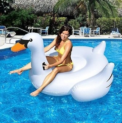 Outdoor Recreation Sports Store Pool Toys Swan Toys for Swimming Pools Kids & Adults by Outdoor Recreation Sports Store