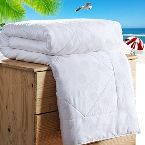 Topsleepy All Size Natural 100% Long Mulberry Silk Comforter Handmade White Softer Quilts (Summer Queen)