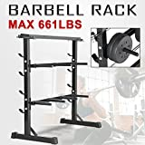 Popamazing 3 Tier Weight Plate & Dumbbell Rack Barbell Storage Stand Holder Home Gym Workout Fitness...