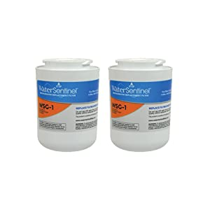 WaterSentinel WSG-1 Refrigerator Replacement Filter: Fits GE, MWF Filters (2-Pack)