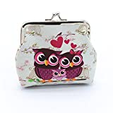 HOT!Cute Vintage Wallet ,BeautyVan Fashion Cute Charming Women Lady Retro Vintage Owl Small Wallet Hasp Purse Clutch Bag (D)
