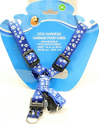 Dog Travel Safety Harness Blue With Whi Buy Online In Japan At Desertcart