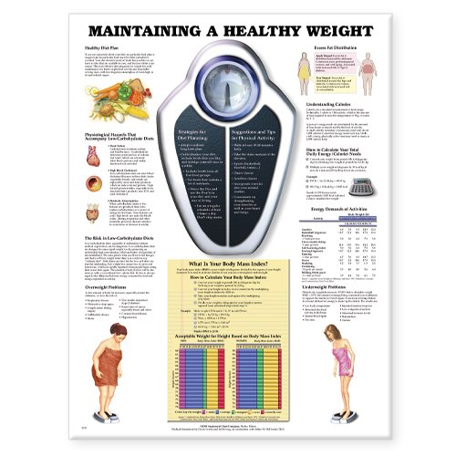 Maintaining Healthy - Maintaining A Healthy Weight