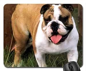 bulldog Cute Cool Decorative Design Animal Dog Mousepad