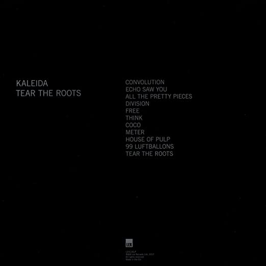 kaleida tear the roots текст