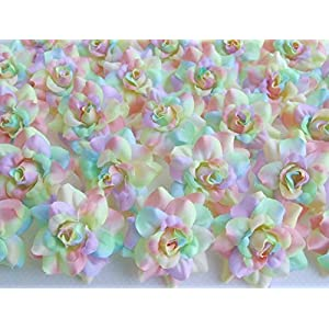 "ICRAFY (24) Silk Rainbow Pastel Tones Roses Flower Head - 1.75"" - Artificial Flowers Heads Fabric Floral Supplies Wholesale Lot for Wedding Flowers Accessories Make Bridal Hair Clips Headbands Dress 7"