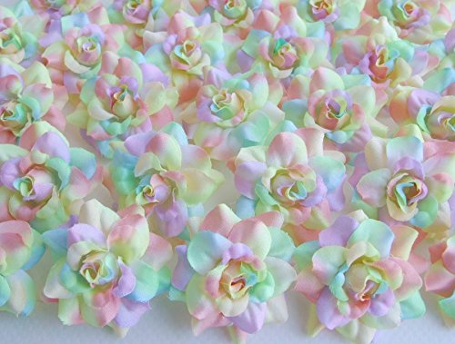 ICRAFY (24) Silk Rainbow Pastel Tones Roses Flower Head - 1.75