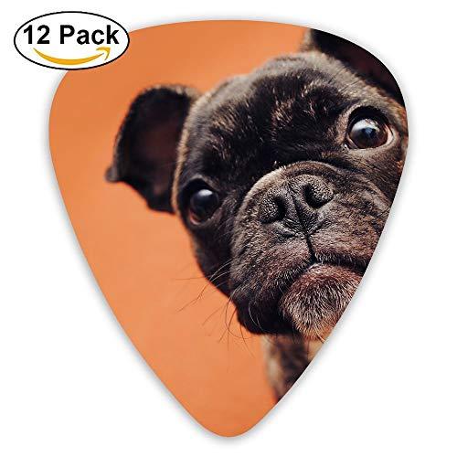 12-pack Fashion Classic Electric Guitar Picks Plectrums French Bulldog Puppies Instrument Standard Bass Guitarist
