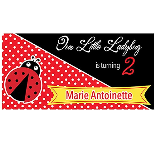 Ladybug Theme Birthday Party Personalized Vinyl Banner, Custom Little Ladybug Personalized Hanging Decor, Little Ladybug Theme Birthday Party Photo - Personalized Banner Birthday Ladybugs