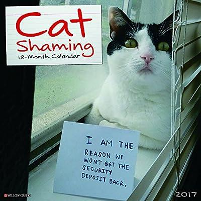 2017 Cat Shaming Wall Calendar