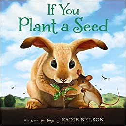Image result for if you plant a seed