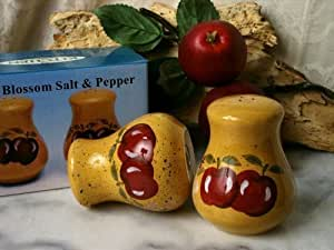 VoojoStore Porcelain Apple Salt and Pepper Shakers - Unique Gift For Birthday Christmas Wedding Anniversary Engagement Graduation Couples Men Women Mom Dad Grandpa Sister Wife Husband Friends